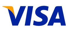 Icon Visa card